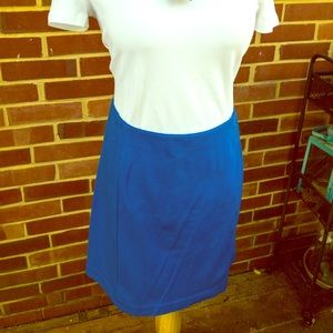 Royal Blue Ann Taylor Skirt